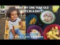 One Year Old Diet 1200 calories | WHAT MY TODDLER EATS IN A DAY