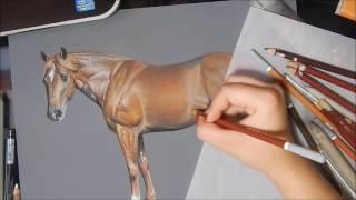 Chestnut Quarter Horse in Pastels