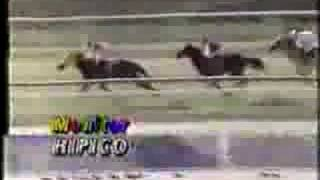 Clasico Jose Antonio Paez 1994