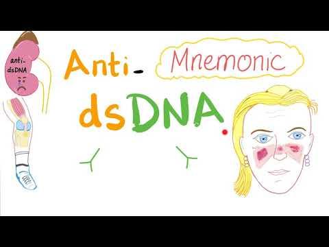 Anti-dsDNA Mnemonic; Systemic Lupus Erythematosus (SLE)