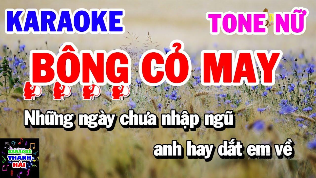 Karaoke Bông Cỏ May   Nhạc Sống Tone Nữ Am Cực Hay   Thanh Hải