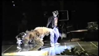 Terra Mobile - Улицы-Дома (выступление в Октябрьском Зале, 1990)