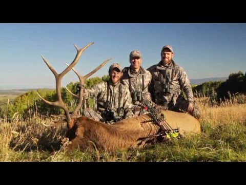 Colorado Trophies | Guided Elk and Deer Hunting on Private Land
