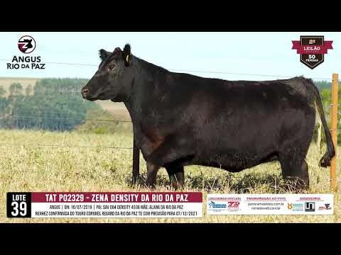 LOTE 39 PO2329 ZENA DENSITY DA RIO DA PAZ - Prod. Agência e TV El Campo