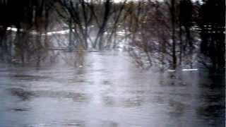 Паводок в Урицком