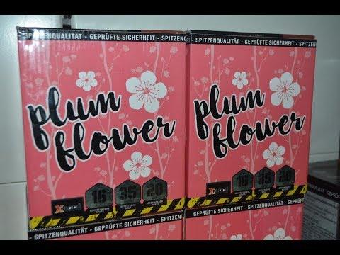 Plum Flower| Neu 2017| [Xplode]