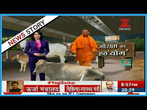 Gau Raksha | Why Yogi Adityanath is fond of serving 'Cows' ?