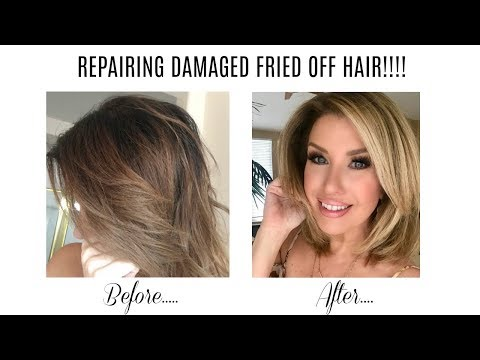 How I Repaired My Damaged Hair After A Disaster!