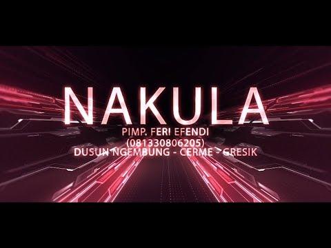 PAMER BOJO - VENDHA JUNG NAKULA LIVE NGEMBUNG CERME - GRESIK 2019