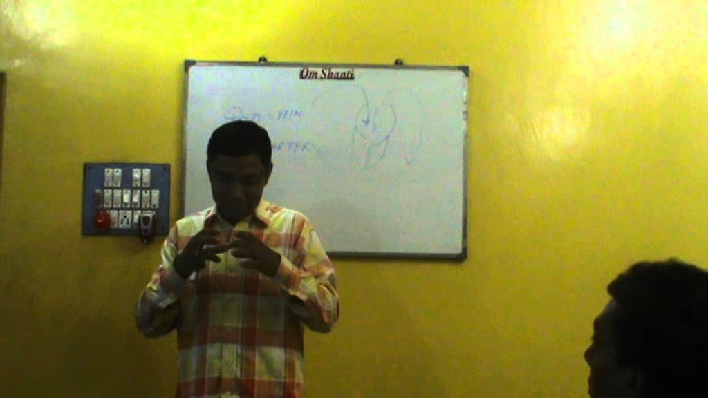 anatomy class in bengali ( heart & blood circulation) - youtube, Muscles