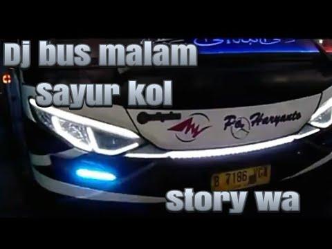 DJ BUS MALAM VERSI SAYUR KOL// STORY WA