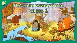 Мультфильм Что едят и где живут Лесные животные часть 2. Мультики для самых маленьких