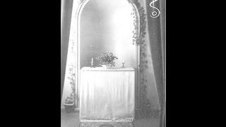 Ungeziefer - Der Spiegelsaal