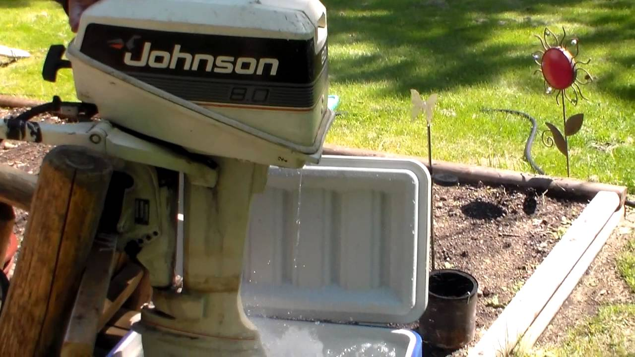 1986 Johnson 8hp Outboard Starting