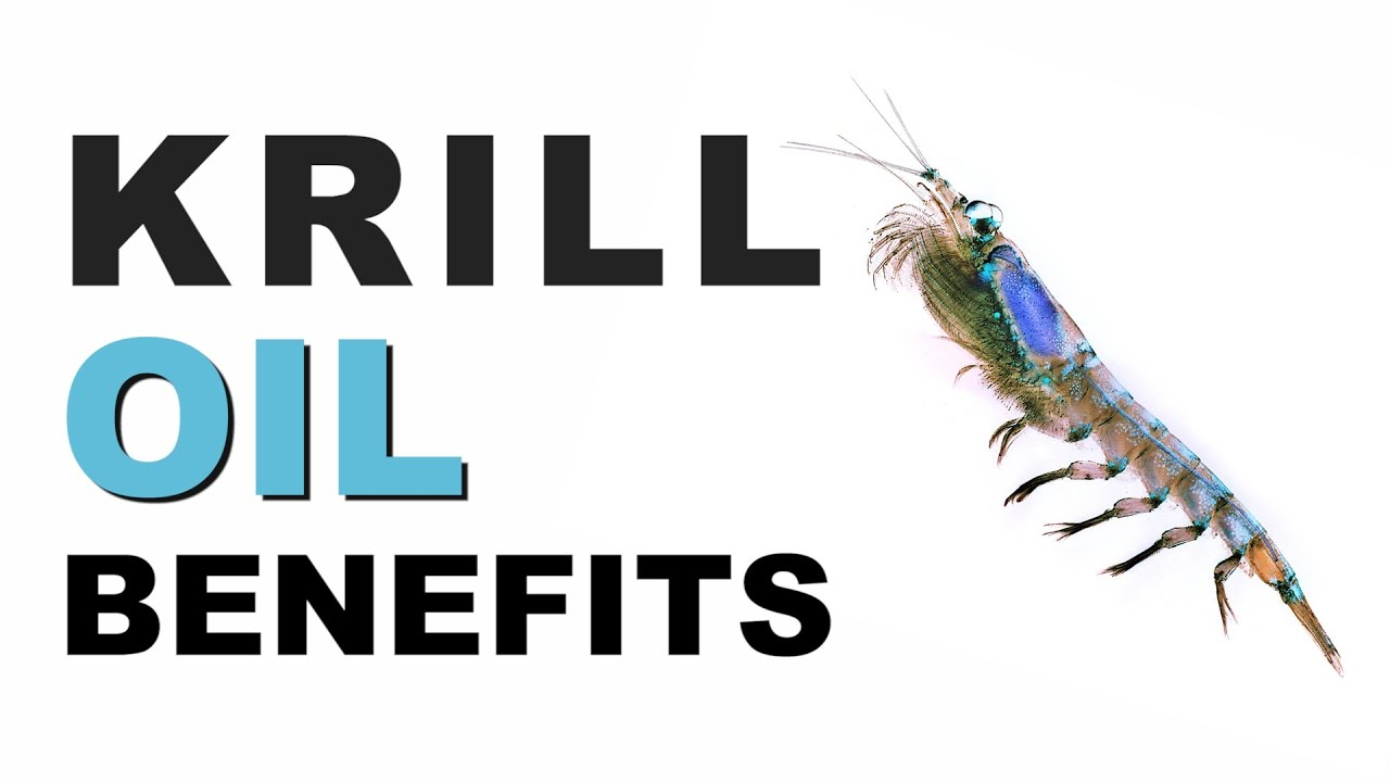 Krill Oil Benefits Of Krill Oil And Omega 3 Youtube