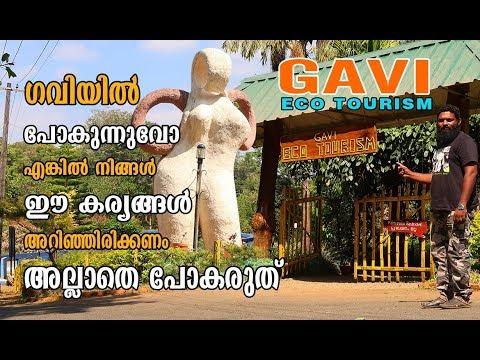 Gavi Eco Tourism നിങ്ങൾ ഗവിയിലേക്ക് പോകുന്നുണ്ടെങ്കിൽ ഈ കാര്യങ്ങൾ അറിഞ്ഞിരിക്കണം#gaviecotourism #MJ