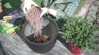 Planting In Pots Correctly