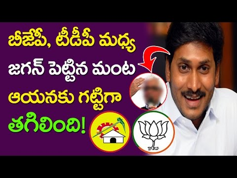 Jagan Modi Meeting Effect On BJP TDP Ties | Amaravthi Startup Programme | CM Chandrababu | Taja30