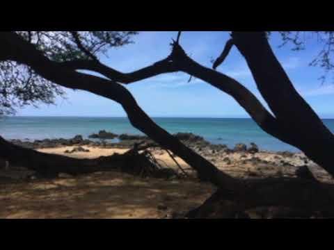 Hawaiian Islands: An Overview