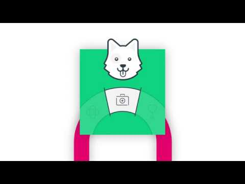 How lifetime pet insurance works with Bought By Many - YouTube