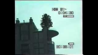 1997 - Canada - Un albero enorme sul tetto