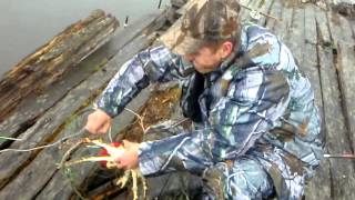 Тащу краба июнь 11(Рыбалка в п. Печенга Мурманской области. Ловля краба., 2013-06-05T19:55:02.000Z)