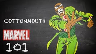 Named for a Snake – Cottonmouth – Marvel 101 Cornell