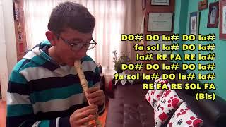 Everybody K 391 En Flauta Dulce Con Notas