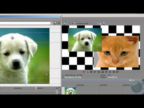 How to do split screen view in sony vegas and how to add a water mark