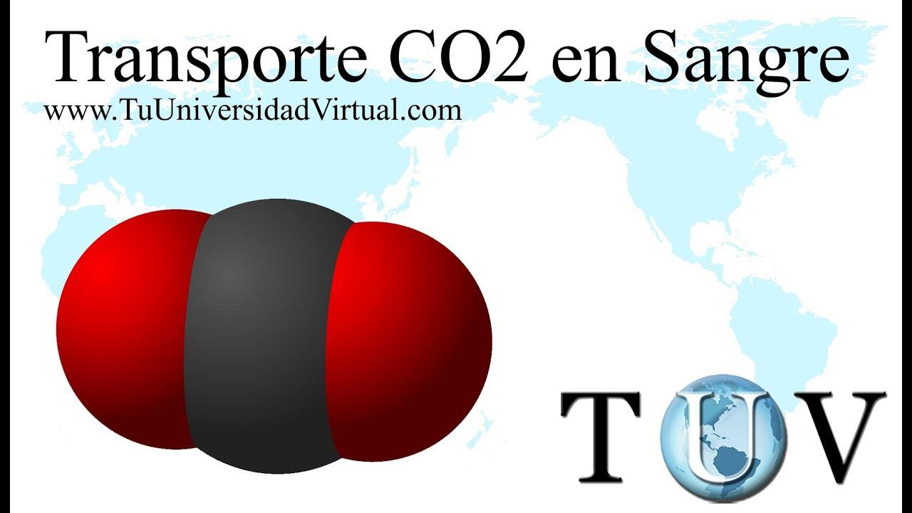 Triada Ecologica Pdf