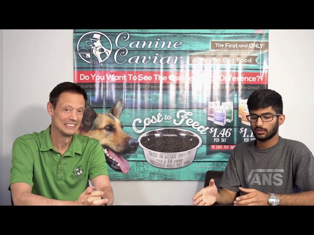 Meet the founders of Canine Caviar