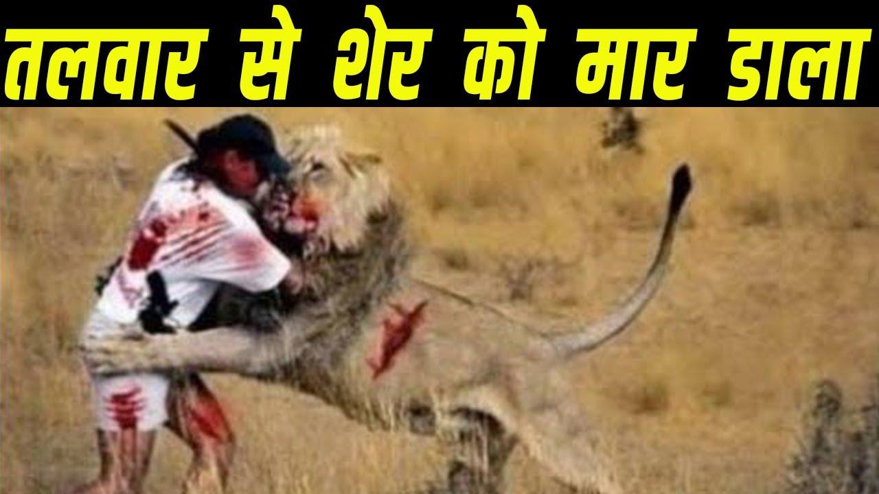 क्या इंसान, तलवार से बाघ को मार सकता है ?