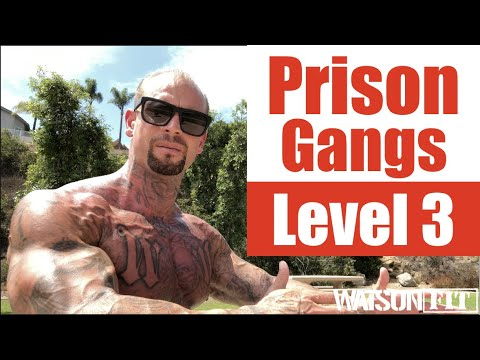 California Prison Gangs- Level 3