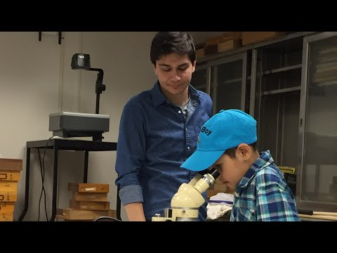 On the Road...American Museum of Natural History   Bug Boy S02E03