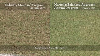 Harrell's Balanced Approach