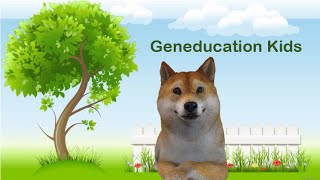 Geneducation Kids: Get familiarized with genes!