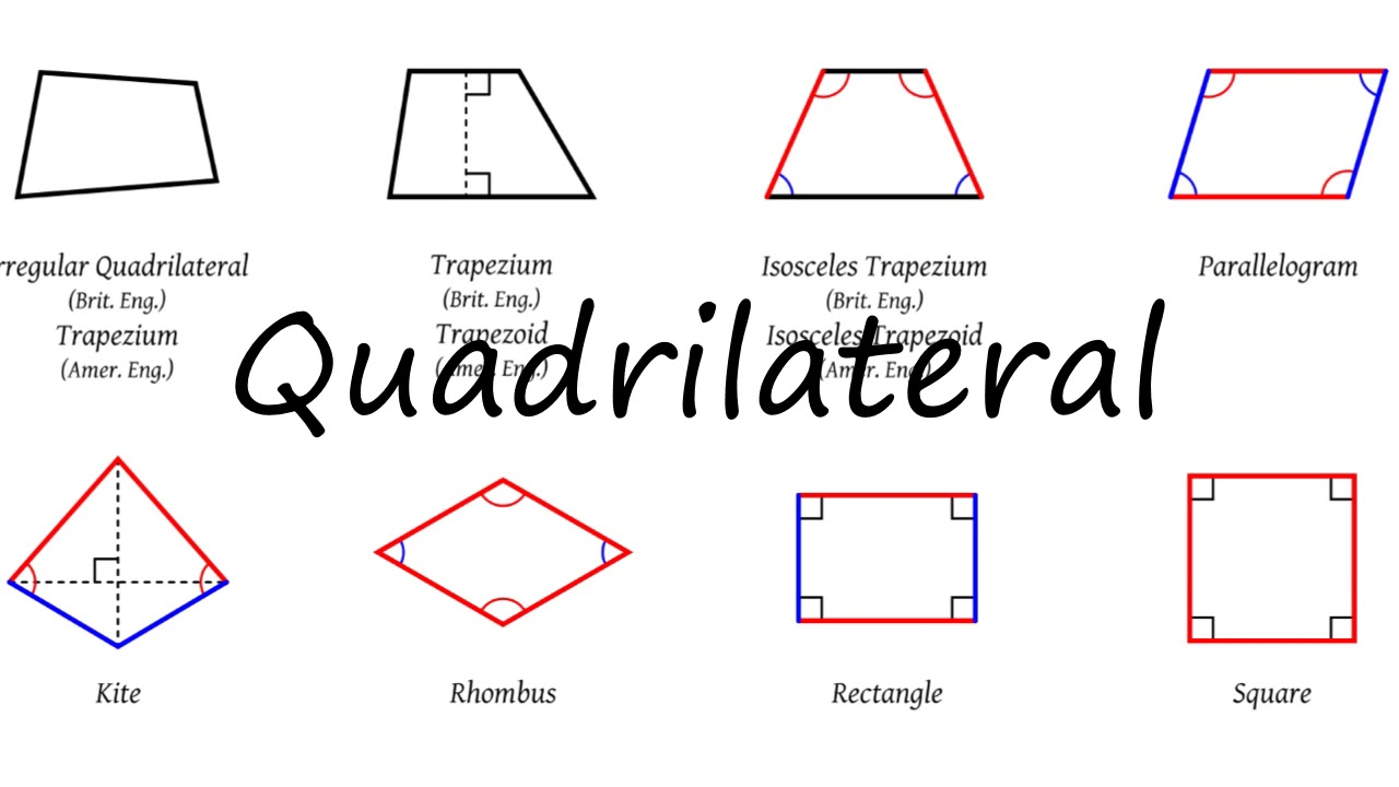 How to Pronounce Quadrilateral?