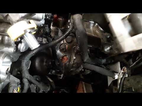 Peugeot Partner Thermostat Housing Replacement