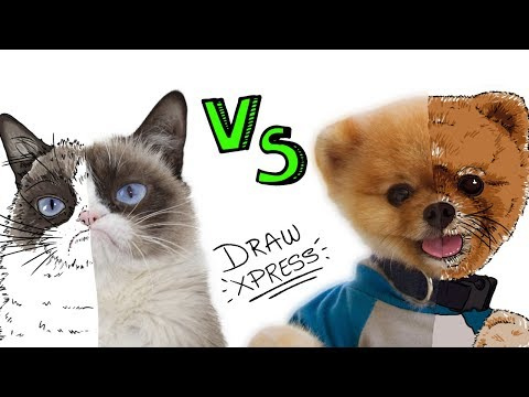 PERROS vs GATOS 🐶vs🐱 | Draw My Life