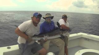 Destin Florida Deep Sea Fishing Charter boat FULL DRAW BillFish Madness!