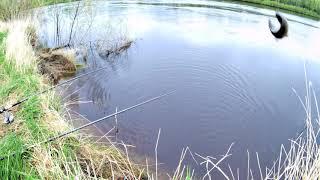 Рыбалка.Карась на удочки на реке.Тура.Созоново.Вот это рыбалка!!!