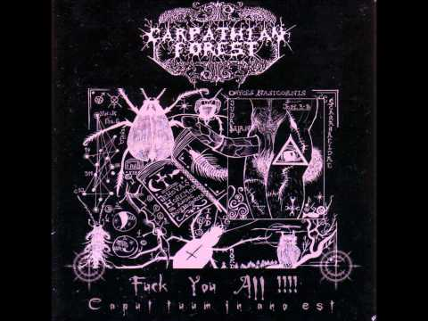 Carpathian Forest - The Frostbitten Woodlands of Norway(HQ) mp3