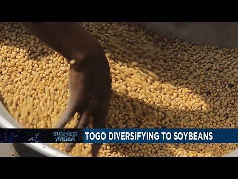 Le Togo se diversifie vers le soja et le Zimbabwe introduit une nouvelle taxe alimentaire