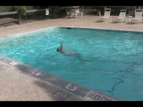 hangin 39 out at the swimming pool outside of reno by laura handziuk youtube. Black Bedroom Furniture Sets. Home Design Ideas
