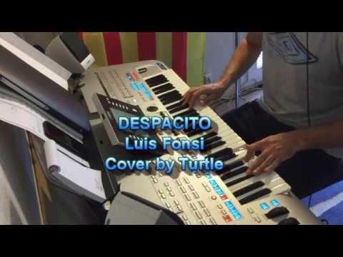 Despacito - Luis Fonsi - cover Turtle
