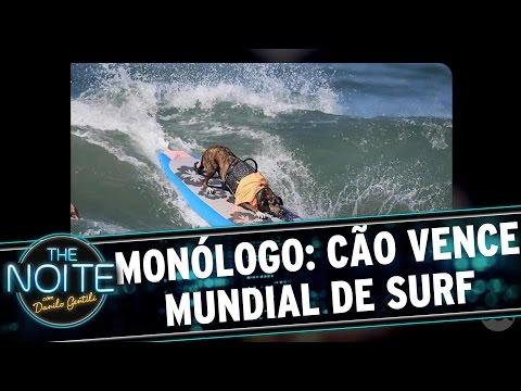 The Noite (27/09/16) - Monólogo: Cão brasileiro vence campeonato de Surf pela 3ª vez