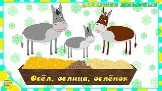 Учим животных:  осёл, ослица, ослёнок! Развивающие мультфильмы о животных