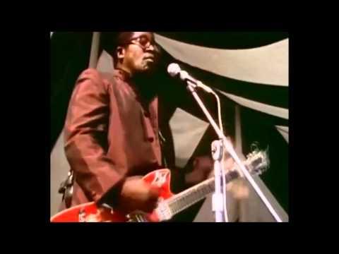 Hey Bo Diddley... Bo Diddley... Sweet Toronto 1969