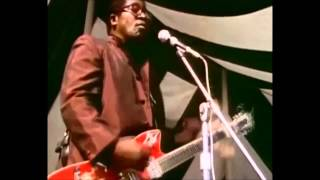 Hey Bo Diddley... Bo Diddley... Sweet Toronto 1969