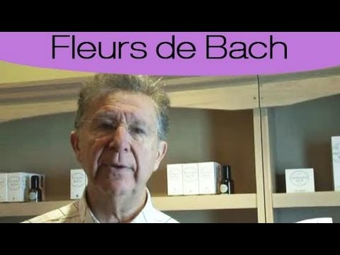 fleurs de bach les plus connues et utilis es youtube. Black Bedroom Furniture Sets. Home Design Ideas